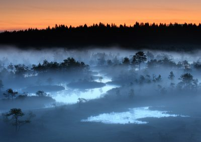 "Remo Savisaar (EST) with ""Early morning fog"""