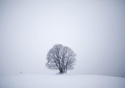 Jonathan Lhoir (FR) | Crow