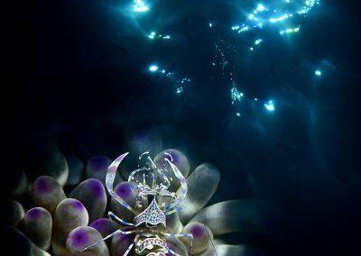 Adriano Morettin (ITA)   Under the stars