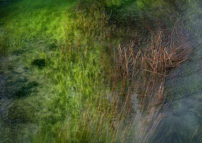 Hernan Bua (ESP)   The green river