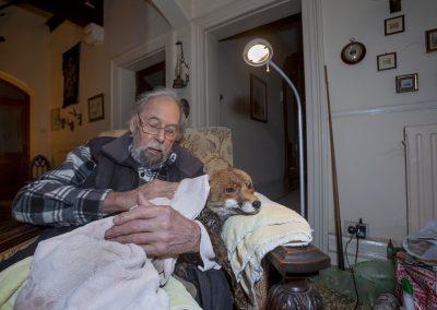 Neil Aldridge (UK)   Living with Foxes