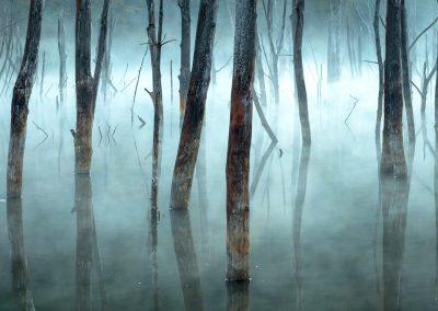 Gheorghe Popa (RO) | Cuejdel my lake